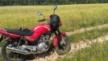 Yamaha YBR125 2008 - ybr125