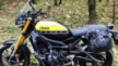 Yamaha XSR900 2016 - Пчелка