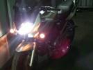 Suzuki GSF1200 Bandit 2001 - Лабрадор