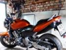 Honda CB600F Hornet 2004 - Рыжая