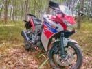 Honda CBR250R 2012 - Сибиха