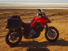 Ducati Multistrada 950 S 2019 - Дуся