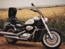 Suzuki VL400 2002 - Бегемот
