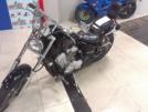 Honda VLX400 Steed 1994 - Steed