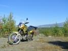 Kawasaki KLE400 1996 - Yellow Subma