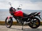 Viper ZS200N 2013 - Viper ZS200N