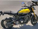 Yamaha XSR900 2016 - bee