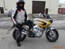 Yamaha TDM850 2000 - Желтый брат