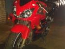 Honda CBR600F4i 2006 - Fury