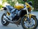 Honda CB600F Hornet 2007 - Шершень