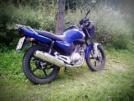 Yamaha YBR125 2009 - Ёбр)