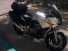 Honda CBF600 2004 - Кот