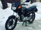 Yamaha YBR125 2014 - Ебрик