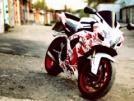 Suzuki GSX-R600 2007 - ----