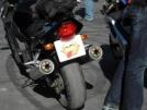 Honda CBR1100XX Super Blackbird 2001 - Птиц;Дроздик