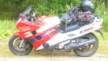 Honda CBR1000F 1996 - Выхухоль