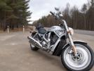 Harley-Davidson VRSCA V-Rod 2003 - V-ROD