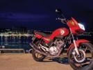 Yamaha YBR125 2009 - Лисичка