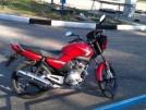 Yamaha YBR125 2014 - Ёбрик, Мот