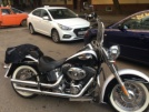 Harley-Davidson FLSTNI Softail Deluxe 2007 - чика