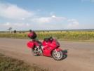 Honda VFR800 V-Tec 2003 - ......