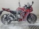 Yamaha FZ1-SA ABS 2008 - Бык