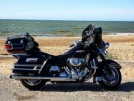 Harley-Davidson FLHTCUI Ultra Classic Electra Glide 2008 - Бык