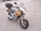 Yamaha TDM850 1999 - Мамонтёнок