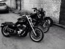 Harley-Davidson Sportster 1200 Custom 2007 - Харли