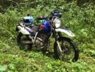 Suzuki Djebel 250GPSver 1998 - верблюд