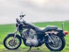Harley-Davidson XL 883 L Sportster 883 Low 2005 - Хрюн
