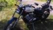 Honda VLX600 Steed 1996 - Steed