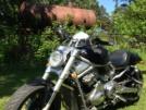 Harley-Davidson VRSCR Street Rod 2006 - harley
