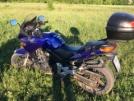Honda CBF600 2005 - Синий
