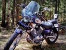 Yamaha Virago XV400 1995 - Птица
