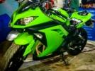 Kawasaki Ninja 300 2013 - Жабик