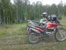 Racer Ranger 200 2014 - Мотоцикл