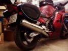 Honda CBR1100XX Super Blackbird 1998 - корова
