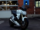 Honda CB600F Hornet 2008 - Хорек