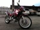 Kawasaki KLE250 Anhelo 1994 - Мот