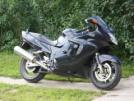 Honda CBR1100XX Super Blackbird 1999 - дрозд