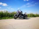 Harley-Davidson FLHX Street Glide 2015 - Крыс