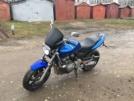 Honda CB600F Hornet 2000 - Жужа