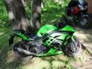 Kawasaki Ninja 300 2014 - лягушенок