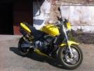 Honda CB600F Hornet 2002 - Пчёлка