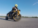 Honda CB600F Hornet 2009 - Хорёк