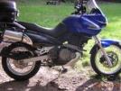 Suzuki XF650 Freewind 2001 - ---