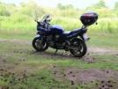 Suzuki GSF600 Bandit 2001 - bandit