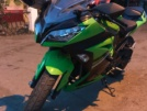 Kawasaki Ninja 300 2015 - Halk