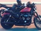 Harley-Davidson Sportster XL 883N Iron 883 2014 - Johnny